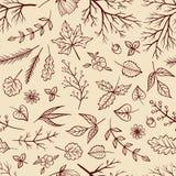 传染媒介乱画样式花卉无缝的样式 免版税库存图片