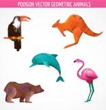 传染媒介五颜六色的多角形动物的汇集 免版税库存照片