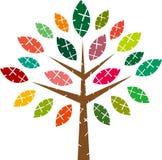 传染媒介五颜六色的树 免版税库存图片