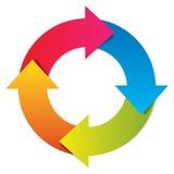 传染媒介五颜六色的生命周期 免版税库存照片
