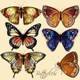 传染媒介五颜六色的蝴蝶的汇集在葡萄酒样式的 免版税库存图片