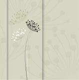 葡萄酒花卉背景 图库摄影