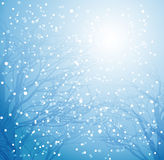 抽象冬天背景 免版税图库摄影