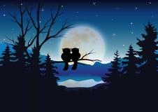传染媒介例证,猫头鹰浪漫夫妇 库存图片