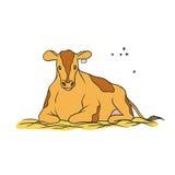 传染媒介剪影上色了被隔绝的例证牲口 年轻红色察觉了与一个标记的母牛在说谎在干草的耳朵并且嚼t 图库摄影