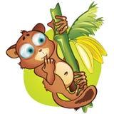 传染媒介动画片小哺乳动物和香蕉 库存图片