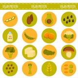 传染媒介动画片素食主义者蛋白质来源 向量例证