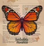 传染媒介印刷品橙色蝴蝶borboleta monarca 在老字典页的可印的艺术图画 免版税图库摄影