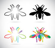 传染媒介图象的昆虫 免版税库存照片