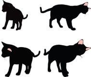 传染媒介图象-在白色背景在摩擦气味姿势的猫剪影隔绝的 免版税库存图片