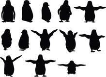 传染媒介图象-在白色背景的小动物企鹅剪影 向量例证