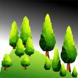传染媒介在山的多角形杉木 库存图片