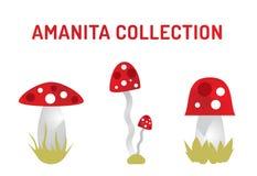 传染媒介在白色隔绝的伞形毒蕈蘑菇 图库摄影