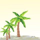 传染媒介在风景的多角形棕榈 库存照片