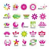 传染媒介多彩多姿的花卉商标 免版税库存图片