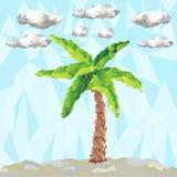 传染媒介多角形棕榈和云彩 免版税图库摄影