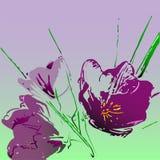 传染媒介多角形水彩郁金香 库存照片