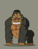 传染媒介大猩猩 库存照片