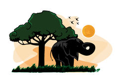 传染媒介大象日落树 库存照片