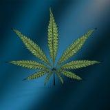 传染媒介大麻叶子样式 免版税库存图片