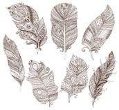 传染媒介套乱画在白色背景用羽毛装饰 皇族释放例证