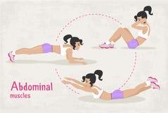 传染媒介套健身腹肌锻炼为妇女行使, 免版税库存图片