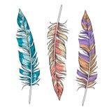 传染媒介套明亮的羽毛 向量例证