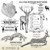 传染媒介套被刻记的手拉的动物鹿、熊、狐狸和加州 免版税库存照片