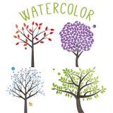传染媒介套水彩样式树 免版税库存照片