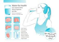 传染媒介妇女饮用水 免版税库存照片