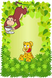 传染媒介猴子饮用的咖啡在森林里 库存照片