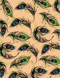 传染媒介孔雀羽毛 图库摄影