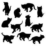 传染媒介小猫剪影 免版税图库摄影
