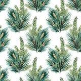 传染媒介水彩圣诞树样式 图库摄影