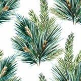 传染媒介水彩圣诞树样式 库存图片