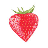 传染媒介水彩草莓 免版税图库摄影