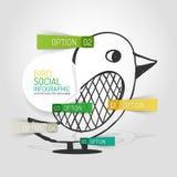 传染媒介得出的社会鸟设计和infographics 免版税库存照片