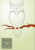 传染媒介恼怒的猫头鹰 免版税图库摄影