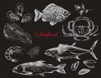 传染媒介手拉的海鲜设置了-虾,螃蟹,龙虾,三文鱼,牡蛎,淡菜,金枪鱼,鳟鱼,鲤鱼 地中海烹调 免版税库存照片