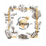 传染媒介手拉的蜂蜜例证 向量例证