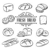 传染媒介手拉的装饰面包 免版税库存图片
