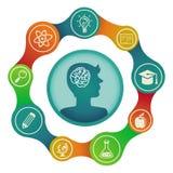 传染媒介教育概念-脑子和创造性 库存例证