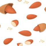 传染媒介无缝的样式杏仁坚果 被剥皮的坚果的例证和在白色背景的壳可以使用它 库存照片