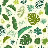 传染媒介无缝的样式热带叶子 库存照片