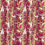 传染媒介明亮的红色用羽毛装饰无缝的样式 向量例证
