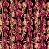 传染媒介明亮的羽毛无缝的样式 库存例证