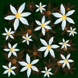传染媒介春黄菊绿色样式设计 向量例证