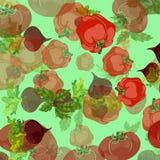 传染媒介有机食品样式 库存例证