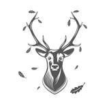 传染媒介有橡木叶子的鹿头 免版税库存照片