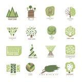 传染媒介树木橡木设计元素徽章现代森林标签和模板自然标签您的企业eco图表的 向量例证